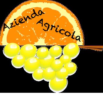 Azienda Agricola | Caruso Vincenzo
